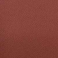 "Thumbnail Image for Aura #SCL-012 54"" Retreat Sienna (Standard Pack 30 Yards)"