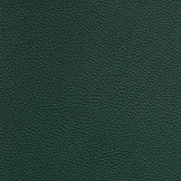 "Thumbnail Image for Aura #SCL-202 54"" Retreat Spruce (Standard Pack 30 Yards)"