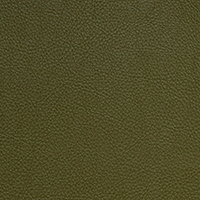 "Thumbnail Image for Aura #SCL-221 54"" Retreat Olive (Standard Pack 30 Yards)"