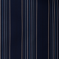 "Thumbnail Image for Sunbrella Fusion #40332-0006 54"" Viento Nautical (Standard Pack 60 Yards)"