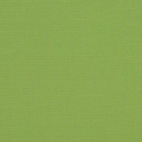 "Thumbnail Image for Sunbrella Awning/Marine #4685-0000 46"" Ginkgo (Standard Pack 60 Yards)"